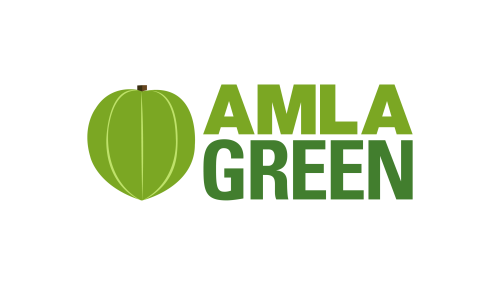 Can You Drink Diet Soda While Intermittent Fasting? – Amla Green